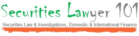 Securities Lawyer 101 Logo